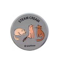 Крем для лица паровой с аргановым маслом SeaNtree Art Steam Cream 35 г (575)