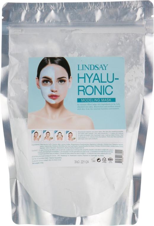 Альгинатная маска для лица с гиалуроновой кислотой Lindsay Premium Hyaluronic Modeling Mask Pack 240 г (8809371144311)