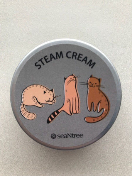 Крем для обличчя паровий з аргановою олією SeaNtree Art Steam Cream 35 г